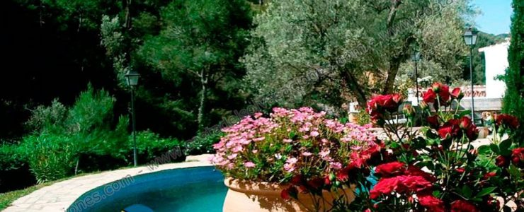 Holiday Bed & Breakfast in a hamlet of Frigiliana